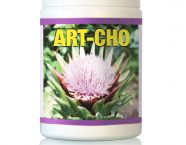 ArtCho_category
