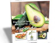avocado_boek